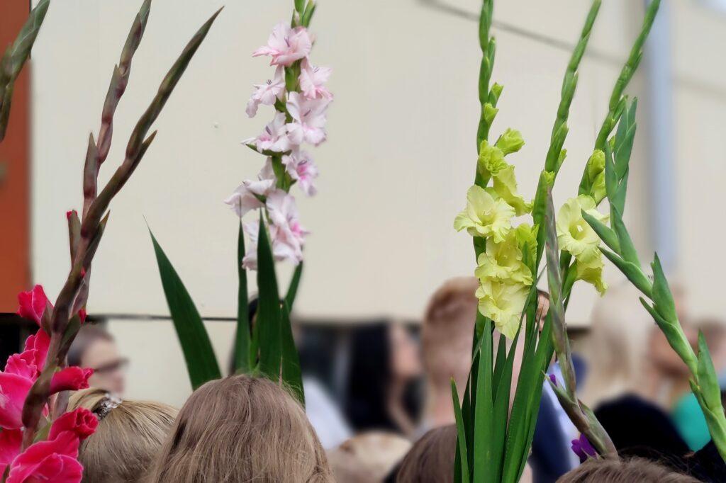 Klaipėdos rajono savivaldybės švietimo įstaigos naujus mokslo metus pasitiko atsinaujinusios.