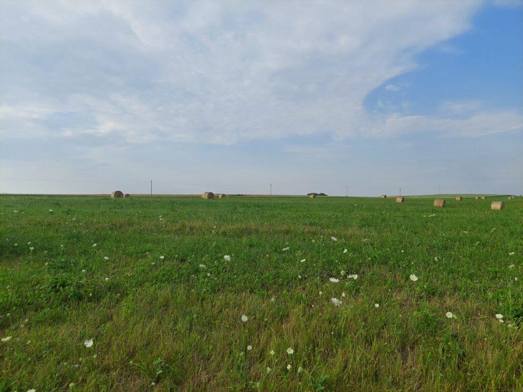 Baltijos šalių statistikos institucijų duomenimis, 2020 metais hektaras žemės ūkio paskirties žemės Lietuvoje vidutiniškai kainavo 4127 eurus, Estijoje – 3553 eurus, 2019 metais Latvijoje – 3922 eurus.