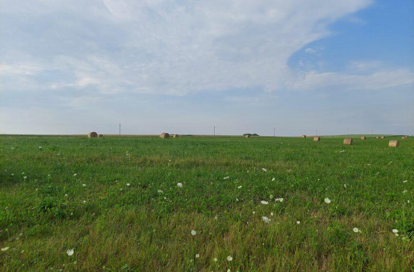 Žemės ūkio paskirties žemė Baltijos šalyse per dešimtmetį pabrango daugiau nei tris kartus