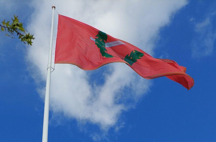 Miesto vėliava paskelbė šventę