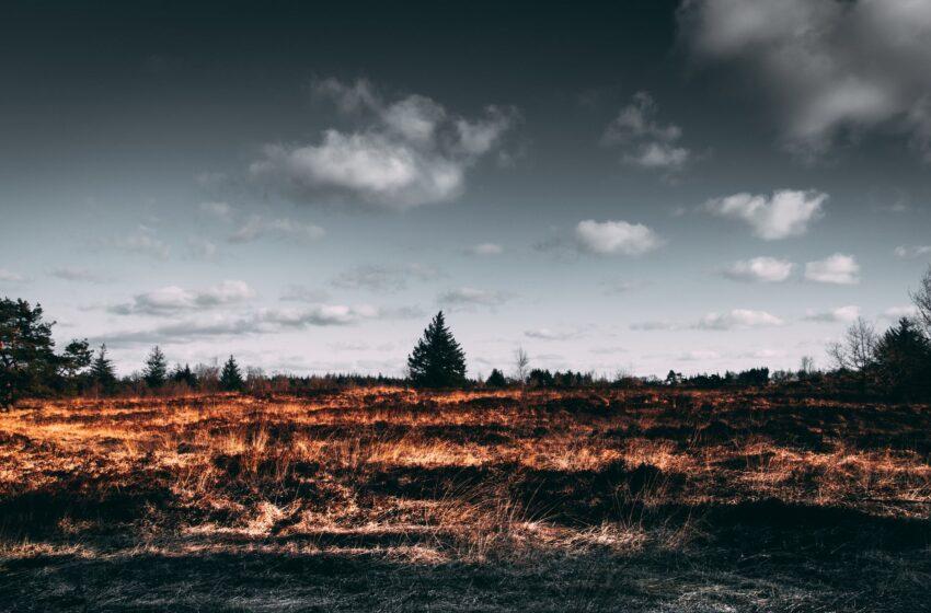 Karštymetyje dega javai, žūsta žmonės