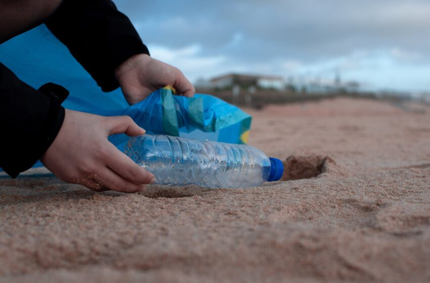 Apklausa: aplinkai labiausiai kenkia nerūšiuojamos šiukšlės ir plastikiniai pirkimo maišeliai