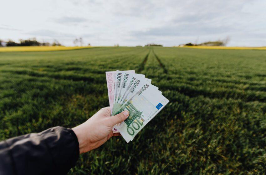 Išmokėta beveik 300 mln. eurų tiesioginių ir kompensacinių išmokų avansų