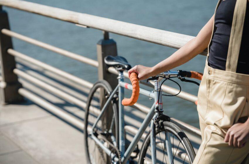 M. Skuodis: kritinė dviračių tako Neringoje būklė netoleruotina